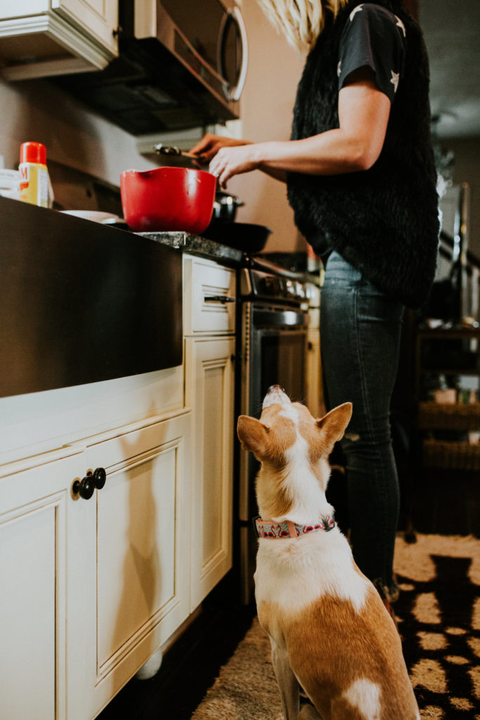 cooking with pups
